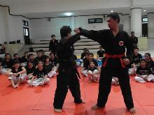 HAPKIDO Special Training and Seminar